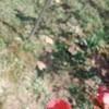 sina_b21qhz32v5