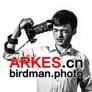 arkes